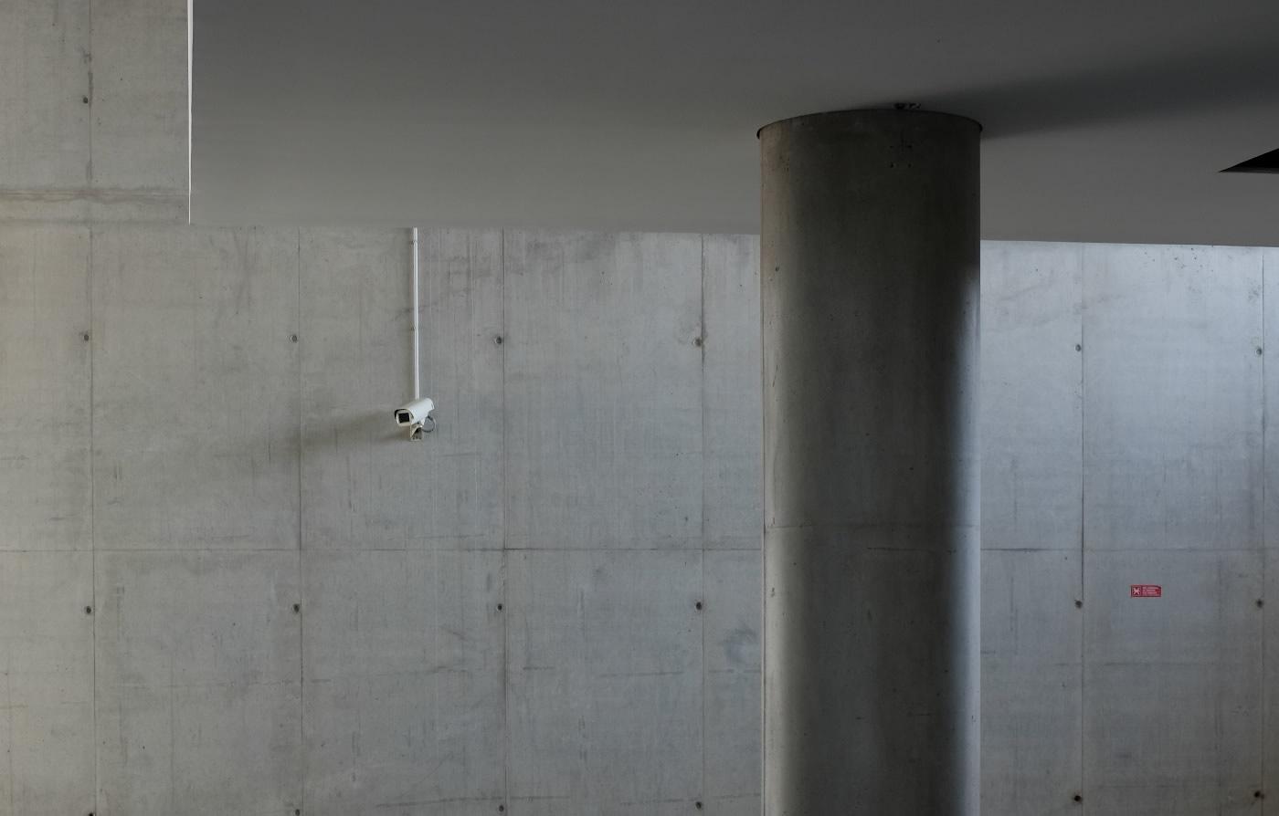 public-surveillance